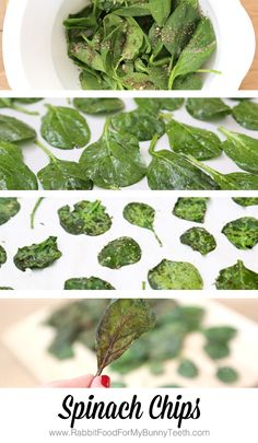SPINACH CHIPS // vegan, gluten-free, low-calorie // baked with only 4 ingredients // 2 large handfuls of spinach, 1 Tbsp olive oil, 1/2 Tbsp Italian herb seasoning, 1/8 tsp sea salt // Bake at 350 for 9-12 minutes