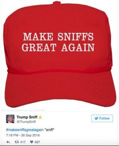 The best jokes, tweets and memes reacting to the first presidential debate between Donald Trump and Hillary Clinton.: Make Sniffs Great Again