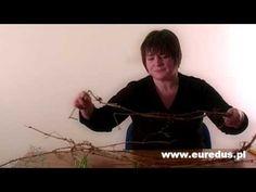 Kurs bukieciarstwo - florystyka - YouTube