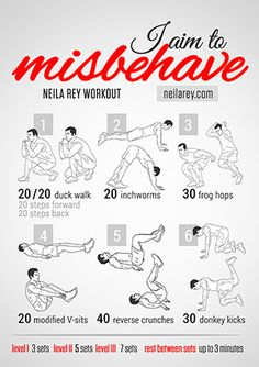 I Aim To Misbehave Workout (*hide*)