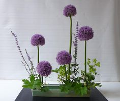 Contemporary Flower Arrangements, Creative Flower Arrangements, Ikebana Flower Arrangement, Ikebana Arrangements, Floral Arrangements, Unique Flowers, Exotic Flowers, Purple Flowers, Beautiful Flowers