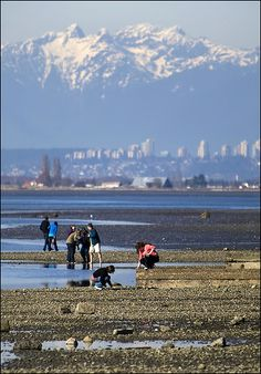 Do not miss White Rock - Crescent Beach when coming up to Vancouver. From the border it is only a short 10 minute drive--stop in at our Peace Arch visitor centre for directions!
