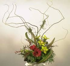Original floral design -- I blend Japanese flower arranging with contemporary floral design styles -- unique look and feel of ikebana, succulents, orchids, phalaenopsis -- each is original, custom-to-order Yukiko's Floral Design Studio Art Floral, Floral Design, Ikebana Flower Arrangement, Floral Arrangements, Spirits Of The Dead, Curly Willow, Japanese Drawings, Photographic Prints, Bonsai