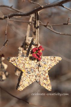Don't forget our feathered friends this cold holiday season. Birdseed ornaments are fun and easy to make and a great craft for kids too. Cabin Christmas, 25 Days Of Christmas, Christmas Design, Christmas Crafts, Christmas Decorations, Christmas Ornaments, Christmas Ideas, Bird Seed Ornaments, Holiday Fun