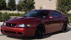 Ford : Mustang SVT Cobra
