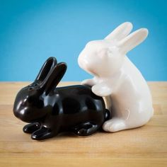 Get this In Season Salt & Pepper Shaker Set for your kitchen. Quirky and unusual pair of shakers in the shape of black and white rabbits. White Bunnies, White Rabbits, Salt Pepper Shakers, Salt And Pepper, Black And White Rabbit, Spice Things Up, Things To Come, Seasoned Salt, Shapes