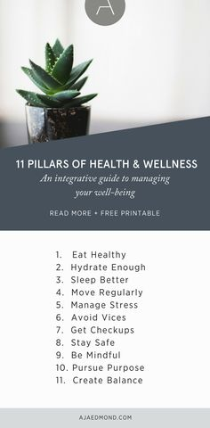 The 11 Pillars of Health & Wellness: An integrative guide to managing your well-being (plus free printable). Read and download at ajaedmond.com