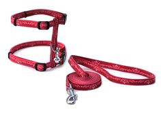 Catit Style Adjustable Harness and Leash Set in Urban *** Read more  at the image link. (This is an affiliate link and I receive a commission for the sales)