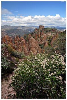 Pinnacles National Park.  Great hike. Went up condor  gulch to high peaks