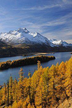 Sils Piz da la Margna Maloja Engadin Snowy Mountains, Rocky Mountains, Travel Around The World, Around The Worlds, Sils Maria, Snow Forest, Alpine Lake, Beautiful Places To Visit, Amazing Nature