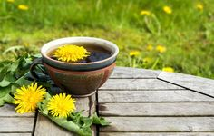 7 Common Backyard Weeds That Are Actually Medicinal Herbs In Disguise  http://www.rodalesorganiclife.com/garden/7-common-backyard-weeds-that-are-actually-medicinal-herbs-in-disguise?utm_source=facebook.com