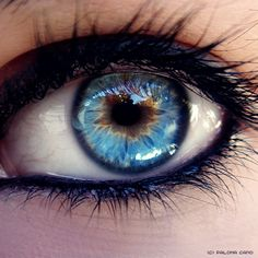 At a first glance or from a distance, her eyes seemed a plain, usual light blue, but upon closer inspection, a fiery orange sparked out from the center, and once you got to know her as a person, you'd understand exactly why.