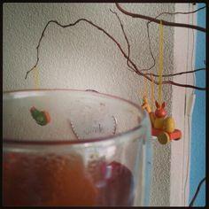 Dag302: echinea thee
