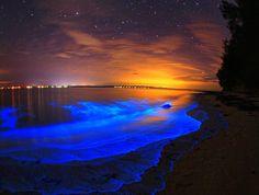 ギプスランド湖@オーストラリア