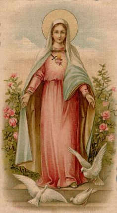 Devotion to the Immaculate Heart of Mary