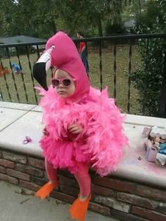 Cutest thing i have ever seen! Pink Flamingo toddler costume & I just found Kinsley's Halloween costume lmao Halloween Bebes, First Halloween, Holidays Halloween, Halloween Party, Happy Halloween, Baby Costumes, Halloween Costumes For Kids, Flamingo Halloween Costume, Funny Toddler Costumes