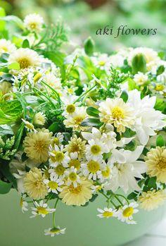 かわいい花たち|Relax with flowers * AKI FLOWERS @ 国立