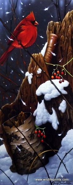 """These male cardinals sure do stand out in the snowy months of winter in this Giclee by Jerry Gadamus called Red Riches. Image Size 12.75"""" x 19.5"""" Signed and Numbered"""