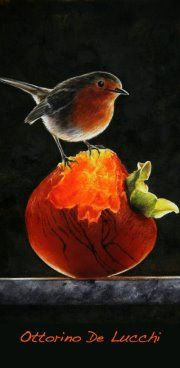 amazing work! - drybrush Drybrush, Robin Photos, Robin Redbreast, Robin Bird, Dry Brushing, Robins, Painting Techniques, Still Life, Projects To Try