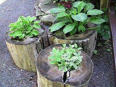 Off-Grid Home Sweet Home: Log Planters...