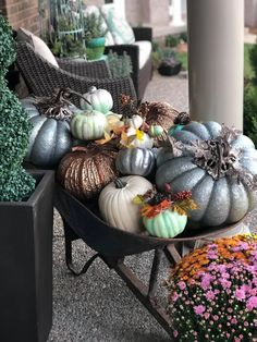 I'm happy to see Fall in Kentucky - Simply Poetic Home Marshmallow Bits, Mums In Pumpkins, Child Plan, Through The Roof, Around The Corner, Im Happy, Trick Or Treat, Over The Years, Kentucky