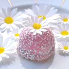 White Daisy Edible 3D Flowers - Spring Daisies - Cake, Cupcake, Cookie Toppers, Gift - Wafer Rice Paper - Yellow Sugar Crystal Centres