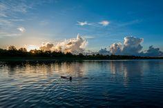台東森林公園 活水湖 by Honta, via Flickr