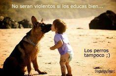 No serán violentos si los educas bien. Los perros tampoco