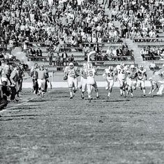American Football League, Sport Football, Dolores Park, Nfl, Vintage, Sports