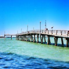 Dealchicken Tampa - Pier