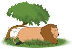 Sheru Lion resting under a tree - the lion and the mouse story is a popular story for kids from the Aesop's Fables. This story has a moral. Love Short Stories, Moral Stories For Kids, Lion Cartoon Drawing, Small Stories For Kids, Lion Story, Picture Story Books, Lion And The Mouse, Moise, Popular Stories