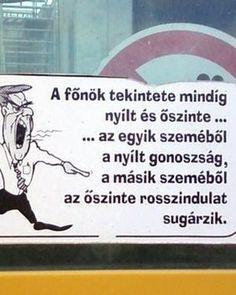 a_fonok__1280528_5016_n.j