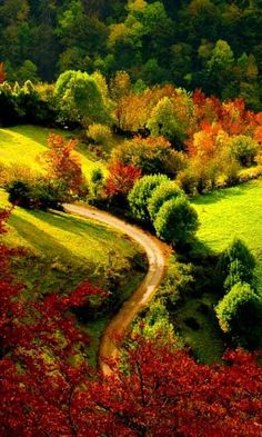 Looks like a beautiful Vermont country road in autumn. Book your Vermont fall foliage retreat today! Foto Nature, All Nature, Green Nature, Beautiful World, Beautiful Places, Beautiful Scenery, Valley Landscape, Landscape Wallpaper, Belle Photo