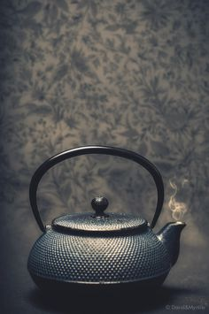 鉄瓶 南部鉄瓶? Japanese iron tea kettle
