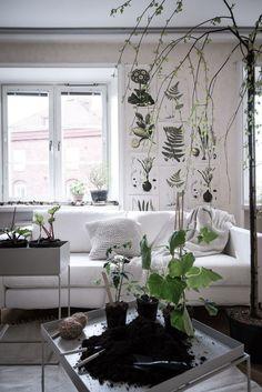 Des plantes vertes pour réchauffer un salon blanc #deco #appartement #contemporain