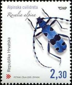 Rosalia Longicorn (Rosalia alpina) Bug Art, First Day Covers, Stamp Collecting, Postage Stamps, Beetles, Pin Collection, Watercolors, Flora, Poster