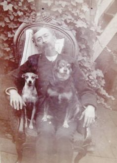 Post mortem man...  with his dogs