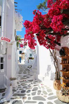 Mykonos, Greece Paros, Santorini Greece, Greece Travel, Crete, Greek Islands, Beautiful Beaches, Holiday Decor, Flowers, Greek Isles