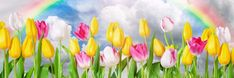 O wat heerlijk, ik kan niet wachten! Het is bijna lente! Ik zit hier achter mijn pc op Yoors en Facebook en ik hoor de vogeltjes fluiten. Ik steek even mijn neus naar buiten en je ruikt het gew