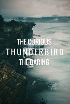Thunderbird. Ilvermorny.                                                                                                                                                                                 More