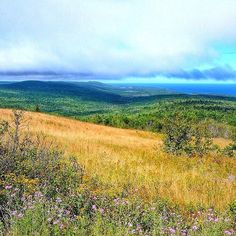 What a view! @northernwayoflife captured this sweeping scene from the top of Brockway Mountain just outside of #CopperHarbor. Who has a trip up north planned for this spring or summer? #PureMichigan #UpperPeninsula #Keweenaw #LakeSuperior