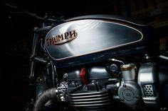 Triumph Scrambler, Triumph Motorbikes, Triumph Bonneville, Triumph Motorcycles, Triumph Thunderbird, Moto Guzzi, Steve Mcqueen, Triumph Logo, Ktm Supermoto