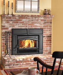 7 Best Fireplace Inserts Images Fireplace Inserts Stove