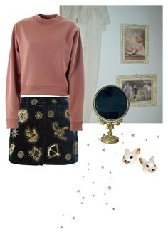 """Untitled #75"" by kittymaid ❤ liked on Polyvore featuring Emilio Pucci and Acne Studios"