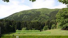 Diverse sfumature di verde per uno stesso #paesaggio: #rimboschimenti artificiali e specie autoctone dipingono la #montagna #italiana.   #ecosostenibile #sprecozero #bellezza #creatività #nutrireilpianeta #energiaperlavita #ruraland #comunicareilrurale #ruralandwed #ruraland4 #tradizioni #biodiversità #clima #energia #risorsenaturali #paesaggiorurale  Ancora 45 giorni e anche tu potrai partecipare al ruraland-WED.