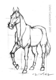 Exciting Learn To Draw Animals Ideas. Exquisite Learn To Draw Animals Ideas. Horse Drawings, Pencil Art Drawings, Art Drawings Sketches, Animal Drawings, Horse Drawing Tutorial, Drawing Ideas, Drawing Art, Arte Equina, Horse Sketch