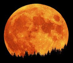 "A full moon in October is known as a ""Hunters Moon"". It is an amazing super moon out tonight!!! :-)"