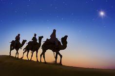 3 nomades suivent l'étoile du Berger et tombe sur un troupeau de moutons - http://boulevard69.com/3-nomades-suivent-letoile-du-berger-et-tombe-sur-un-troupeau-de-moutons/?Boulevard69