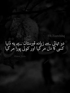 It explains my situation Text Quotes, Urdu Quotes, Poetry Quotes, Poetry Text, Love Poetry Urdu, Urdu Shayri, Urdu Thoughts, Reality Of Life, Qoutes About Love