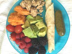 Paleo kids dinner idea: ground turkey, sweet potato, fresh fruit, avocado, pickle, and cassava flour tortilla with sunflower butter